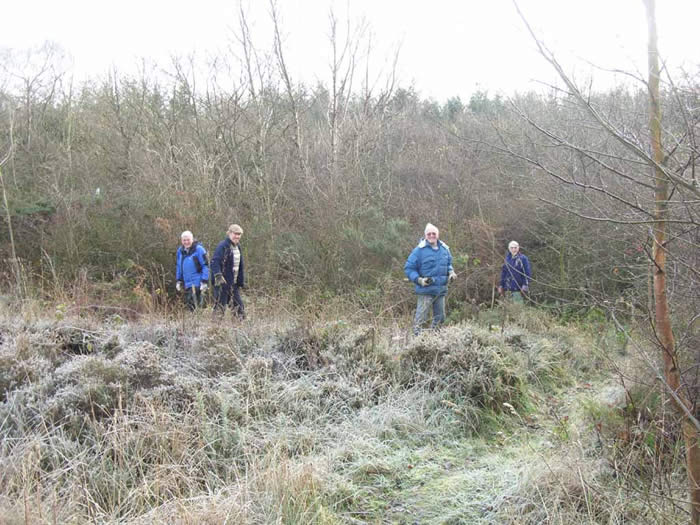 Volunteers on the heathland