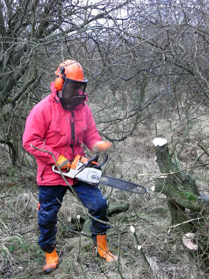 Volunteer Richard using the chainsaw