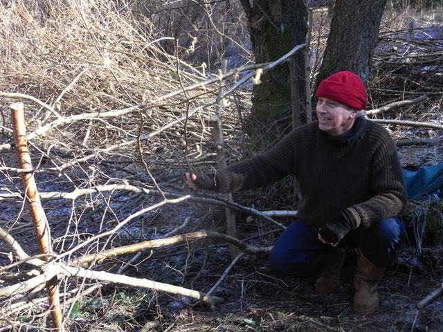 Chris with the dead hedge