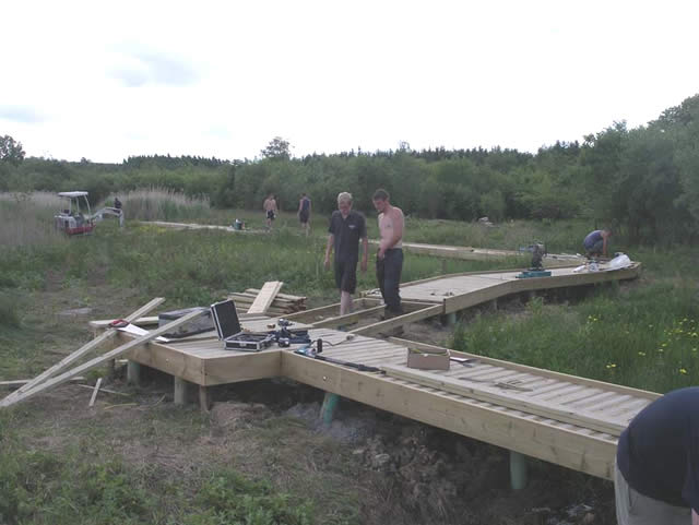 Scrapes boardwalk