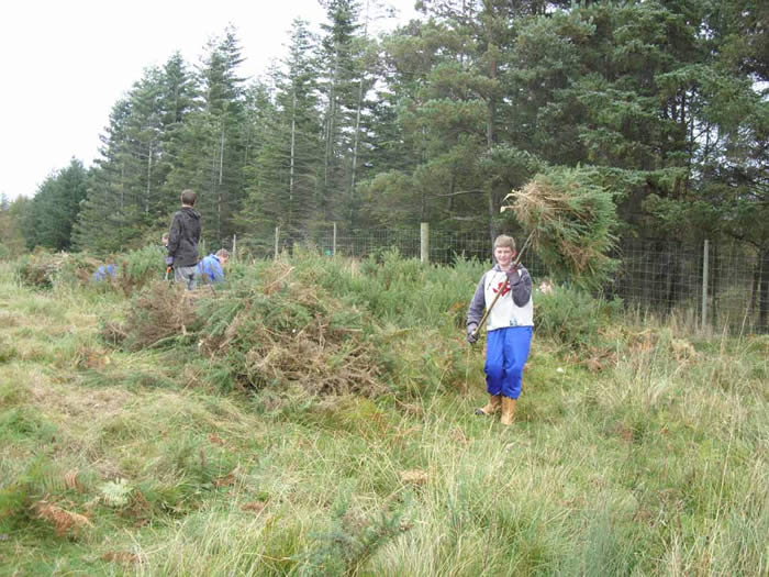Askham Bryan students clearing Gorse from the moor