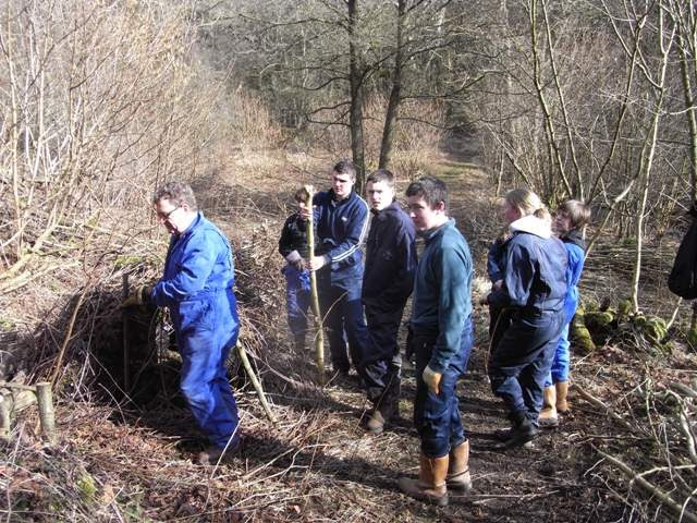 Students from Askham Bryan working on the coppice