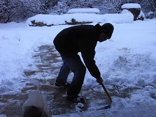 Volunteers clearing the paths