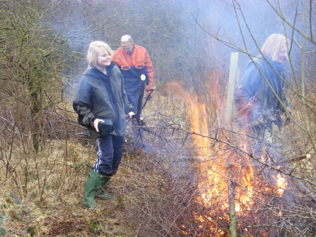 John, Beryl and Emma clearing Silver Birch