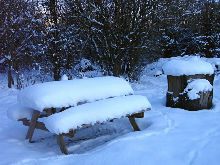 Snow covering the picnic benches