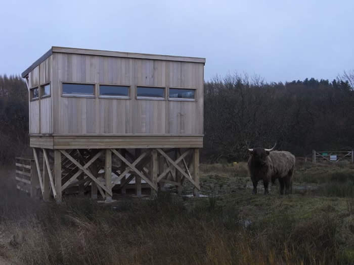 Hector next to the hide