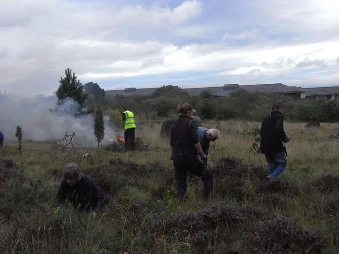 Bonfire on the heathland