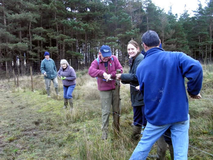 Volunteers taking down the electric fence