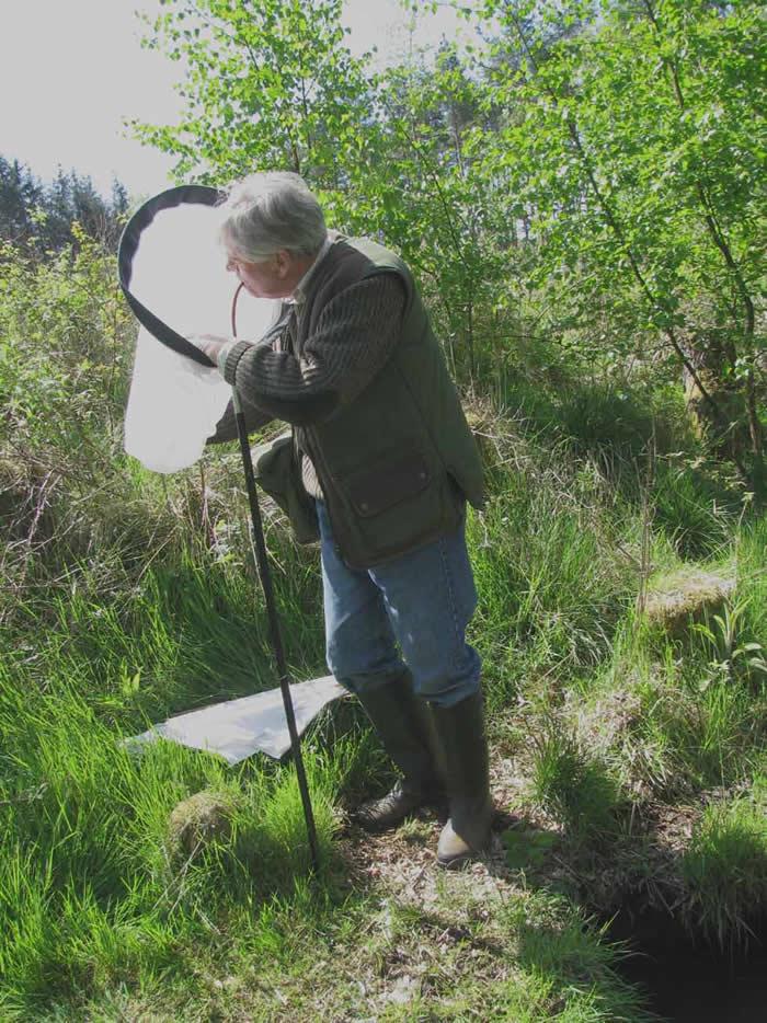 Roy Crossley Entomologist
