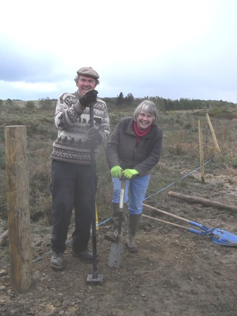 Volunteers installing fence posts