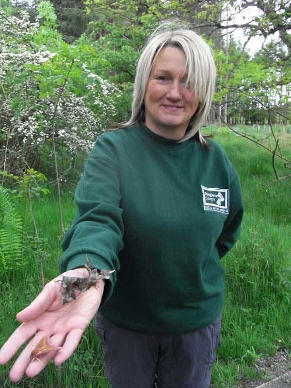 Sandra holding the hawk moth