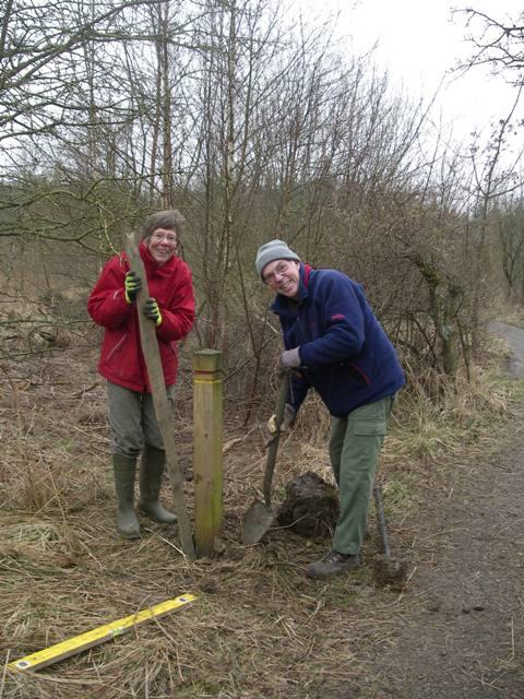 Volunteers installing posts