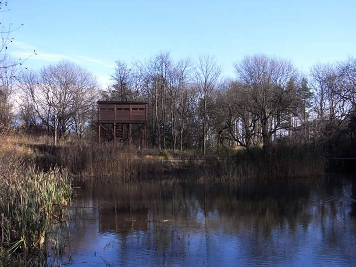 The tower hide