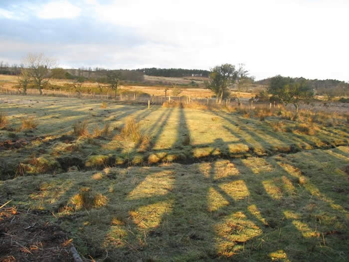 Shadows across the moor