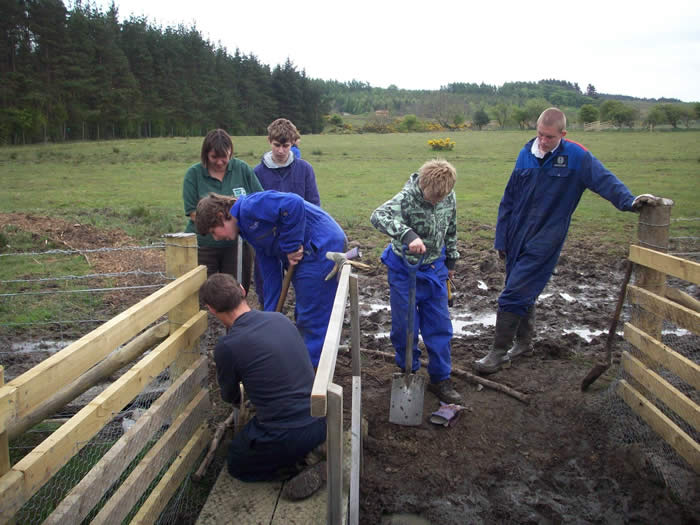 Tim and students removing the bridges