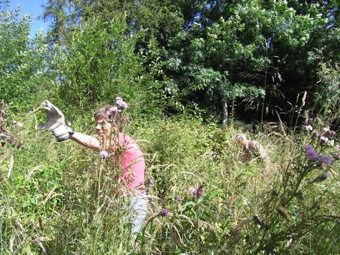 John and Ann cutting the grasses and brambles