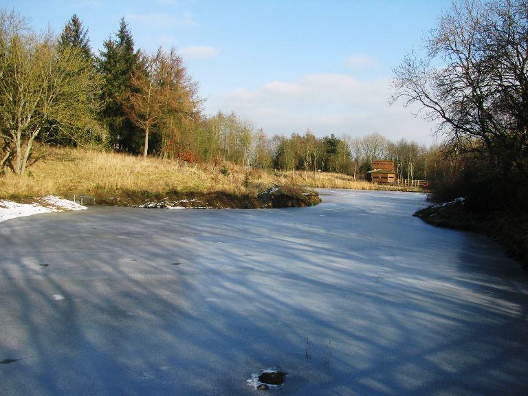 Frozen Lake in Winter Sun