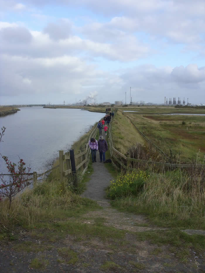 Trip to the RSPB reserve at Saltholme