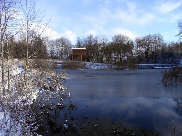 The lake and hide