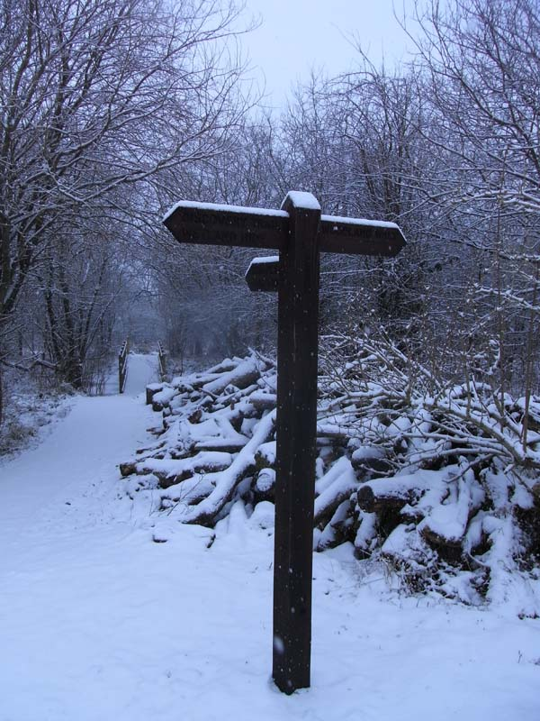 Snow on the signpost