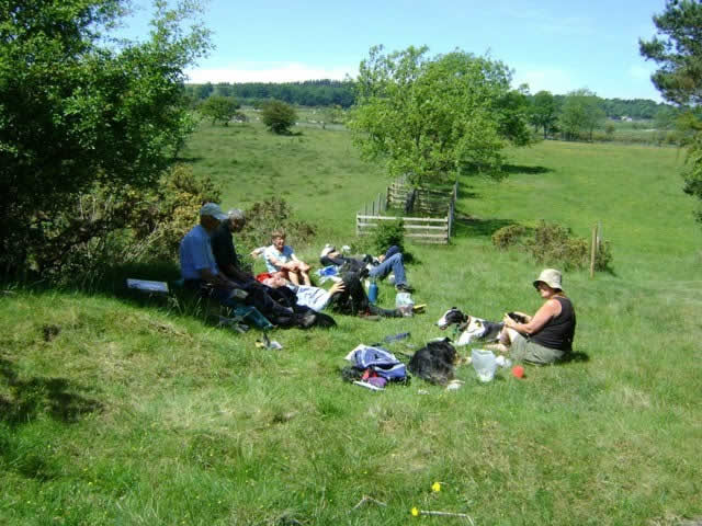 Picnic on the moor