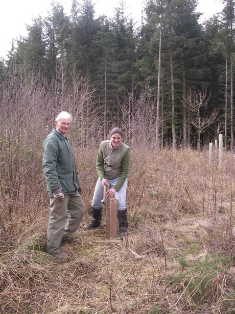 Volunteers working in the woodland