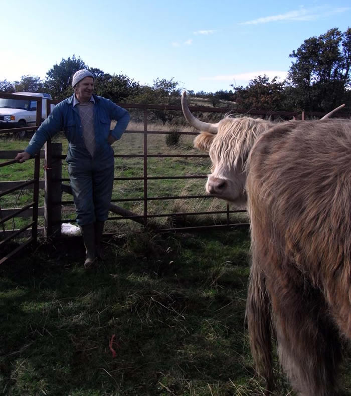 Keith with the cattle