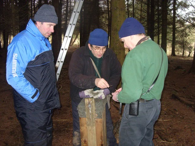 Tom, Ray and Paul checking the Tawny Owl boxes