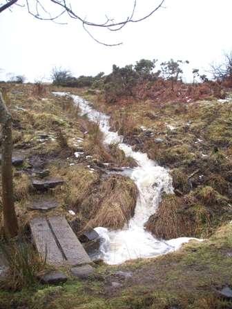 Becks running down the moorland