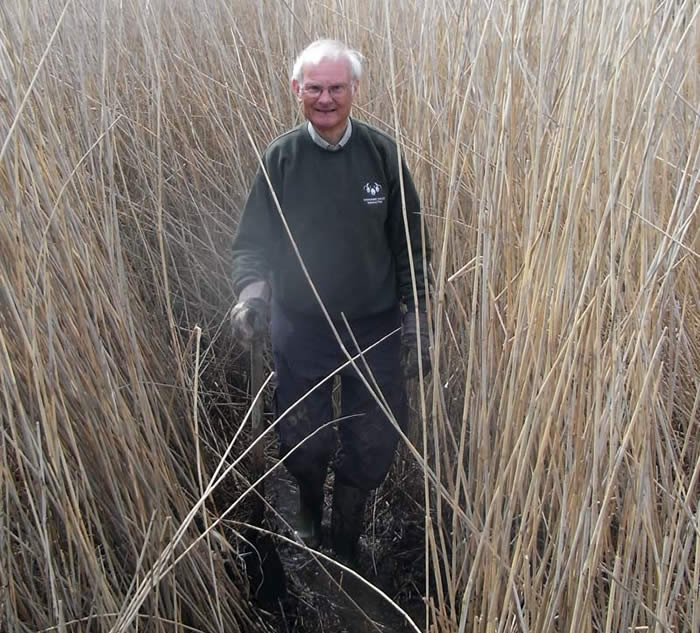 John clearing a path through the reeds