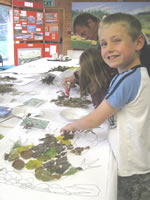 Arty activities at the Eco-Club