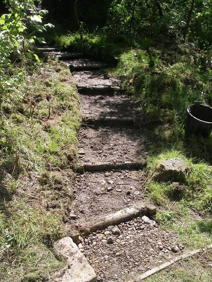 Steps to the Woodland Walk