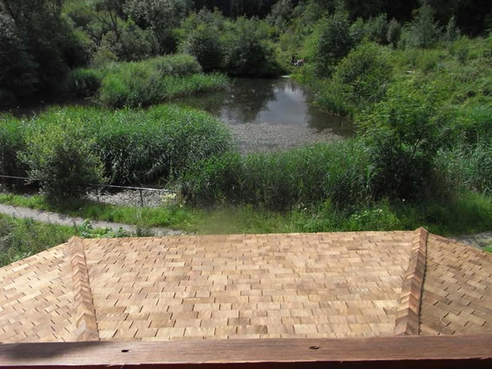Roof of the new hide