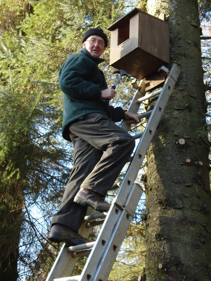 John putting up a box