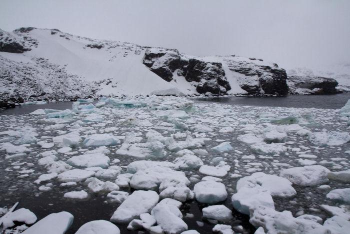 Broken icebergs