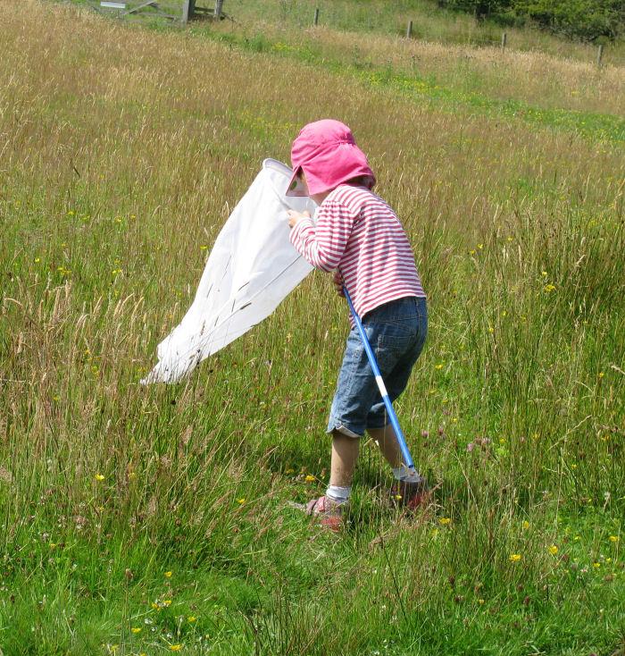 child sweep netting on the moor