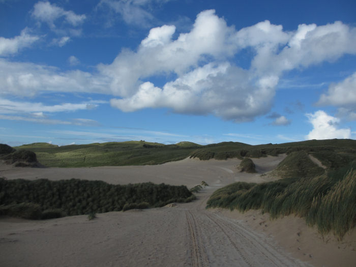 Blue sky and sand dunes