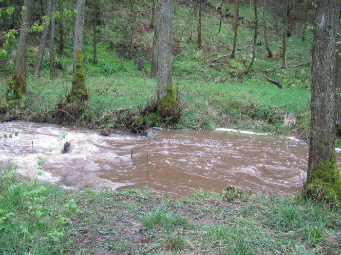 Dam on Risedale Beck