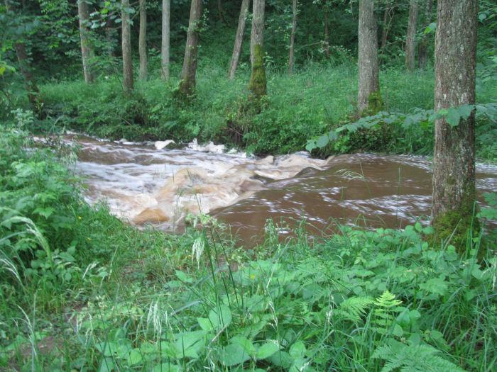 Dam in Risedale beck
