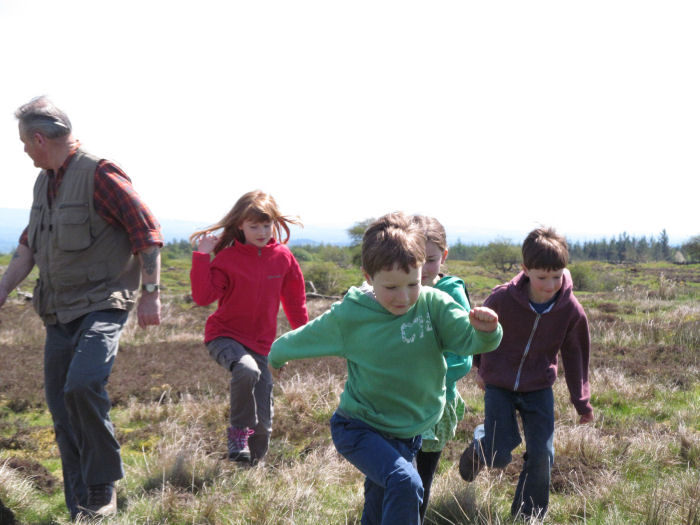 Releasing the Red Grouse