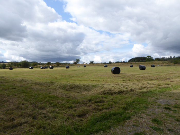 Bales on the middle moor