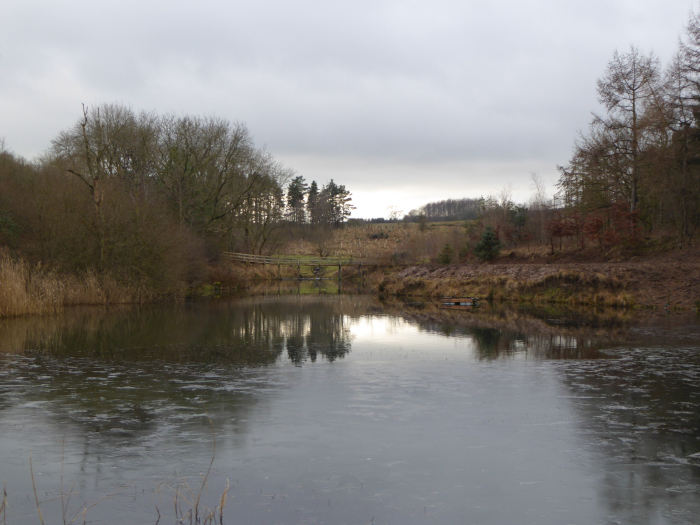 looking towards the moor from the weir