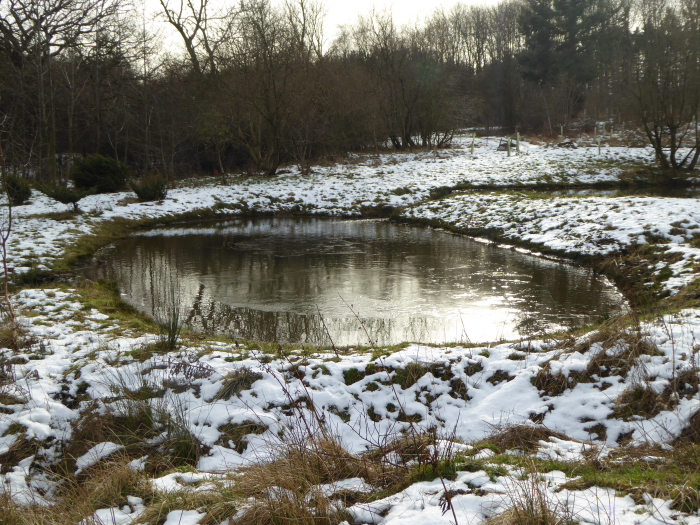 The pools in snow