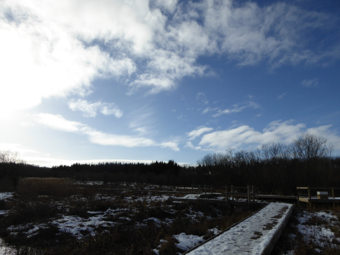 The scrapes with blue sky