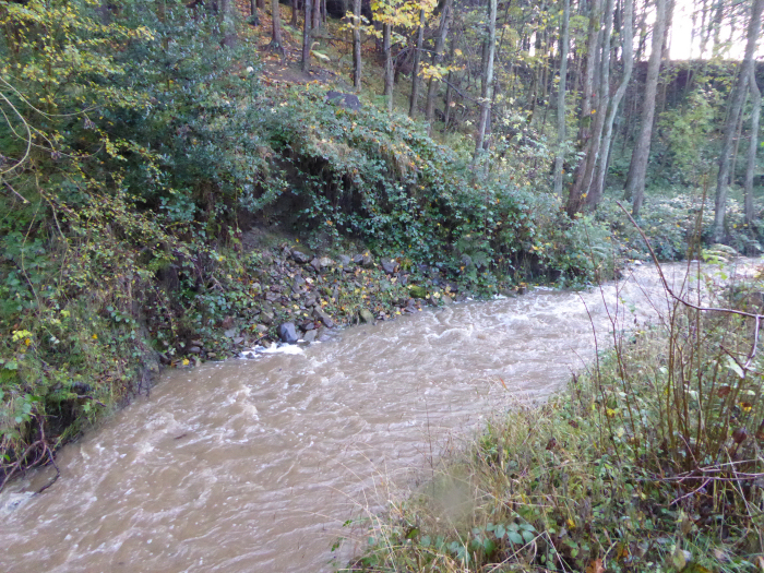Risedale Beck in flood