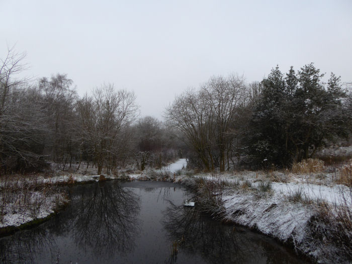 Snow around the Voley Pond