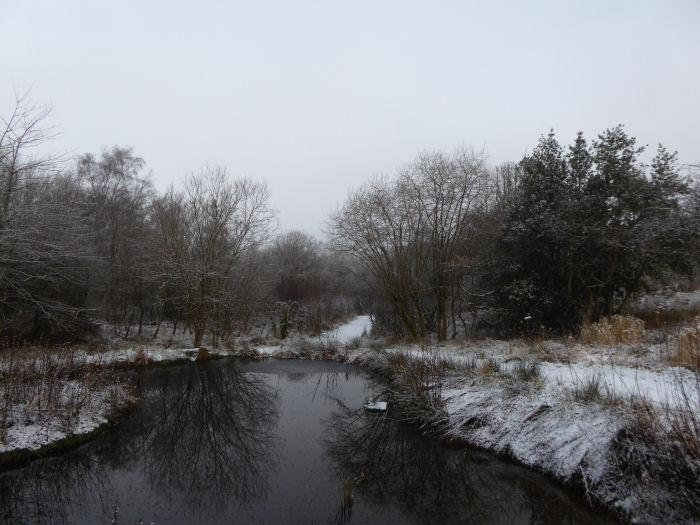 Snow around the Voley Pond