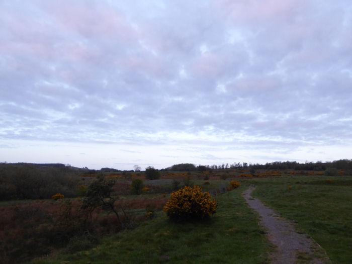 Sky over the moor