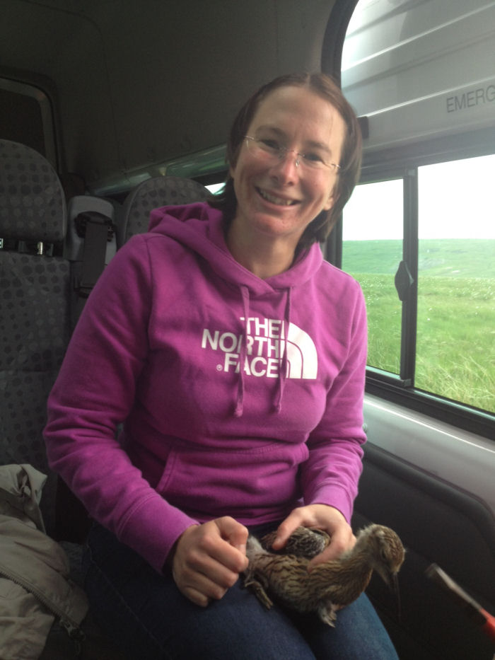 Fran with Curlew chick