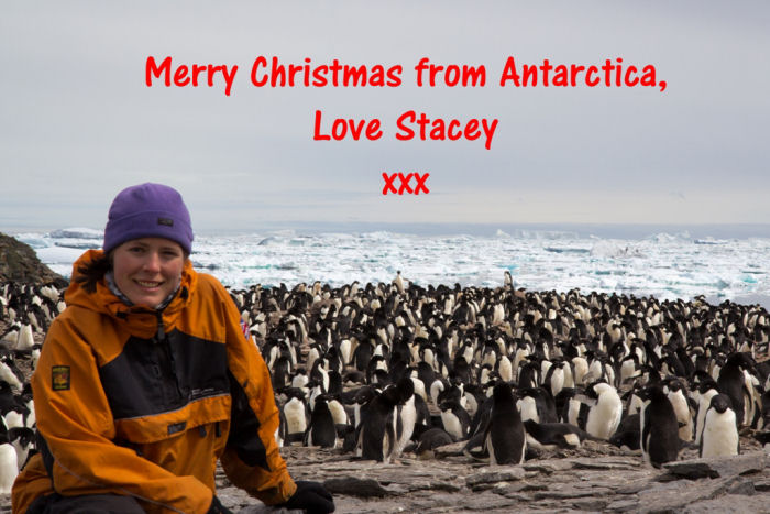 Christmas greetings from Stacey